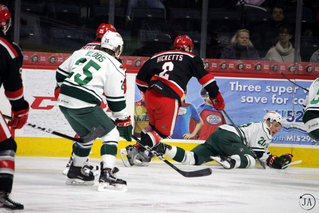 grand rapids griffins, griffins hockey, ahl, ahl hockey, red wings affiliate, joe hicketts