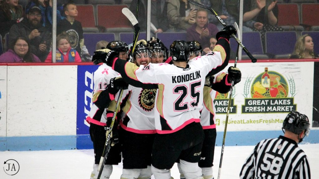 muskegon lumberjacks, lumberjacks hockey, goal celebration, captain, anthony del gaizo, kondelik, draft pick, hockey prospects