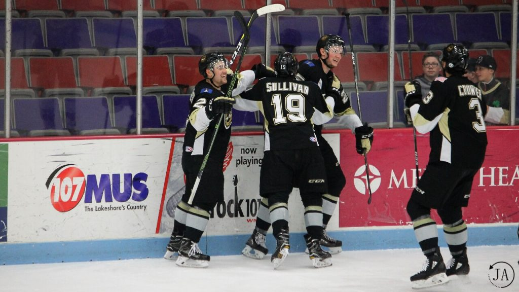 sullivan, muskegon lumberjacks, lumberjacks hockey, goal celebration, ushl, junior hockey