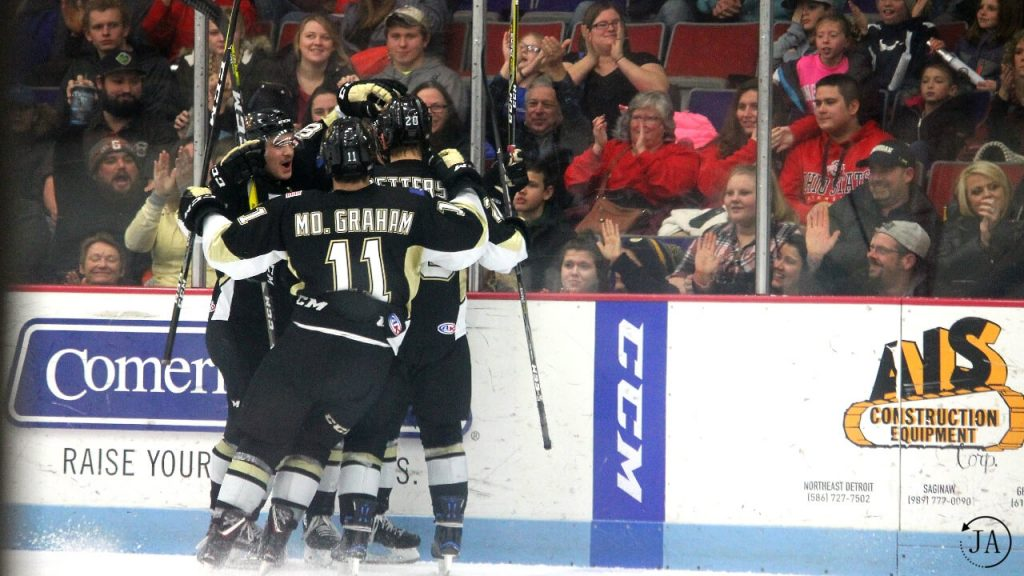 goal celebration, ushl, junior hockey, muskegon lumberjacks, lumberjacks hockey
