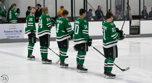 dallas stars, prospects, tournament, traverse city, nhl, ahl