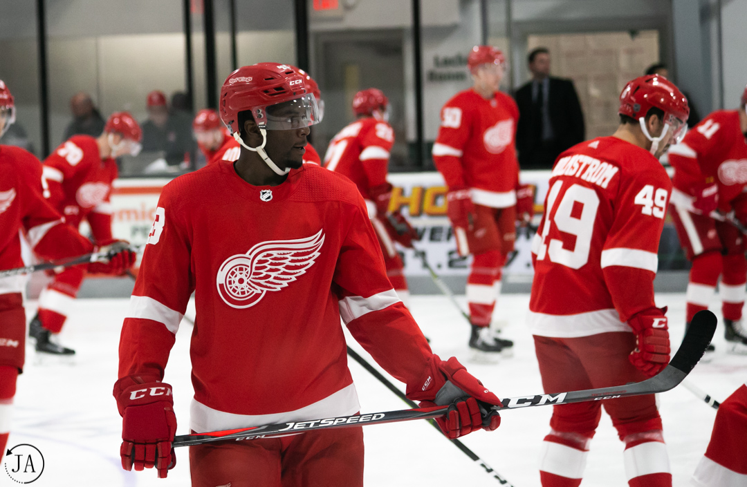 givani smith, red wings, detroit red wings