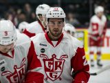 Dominic Turgeon, Grand Rapids Griffins, Detroit Red Wings, NHL, AHL