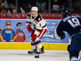 Joe Hicketts, Grand Rapids Griffins, AHL, NHL, Detroit Red Wings